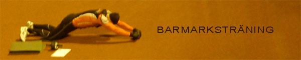 Barmarksträning, Ö–IP, 2010-10-18. Mobilkamerafoto: Ulf Haase.